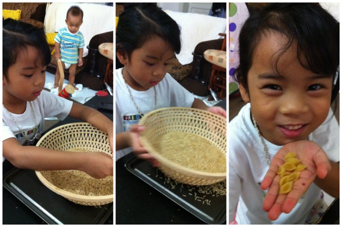 BJU Activity: Panning for Gold (using brown rice as sand and pasta shells as gold nuggets)