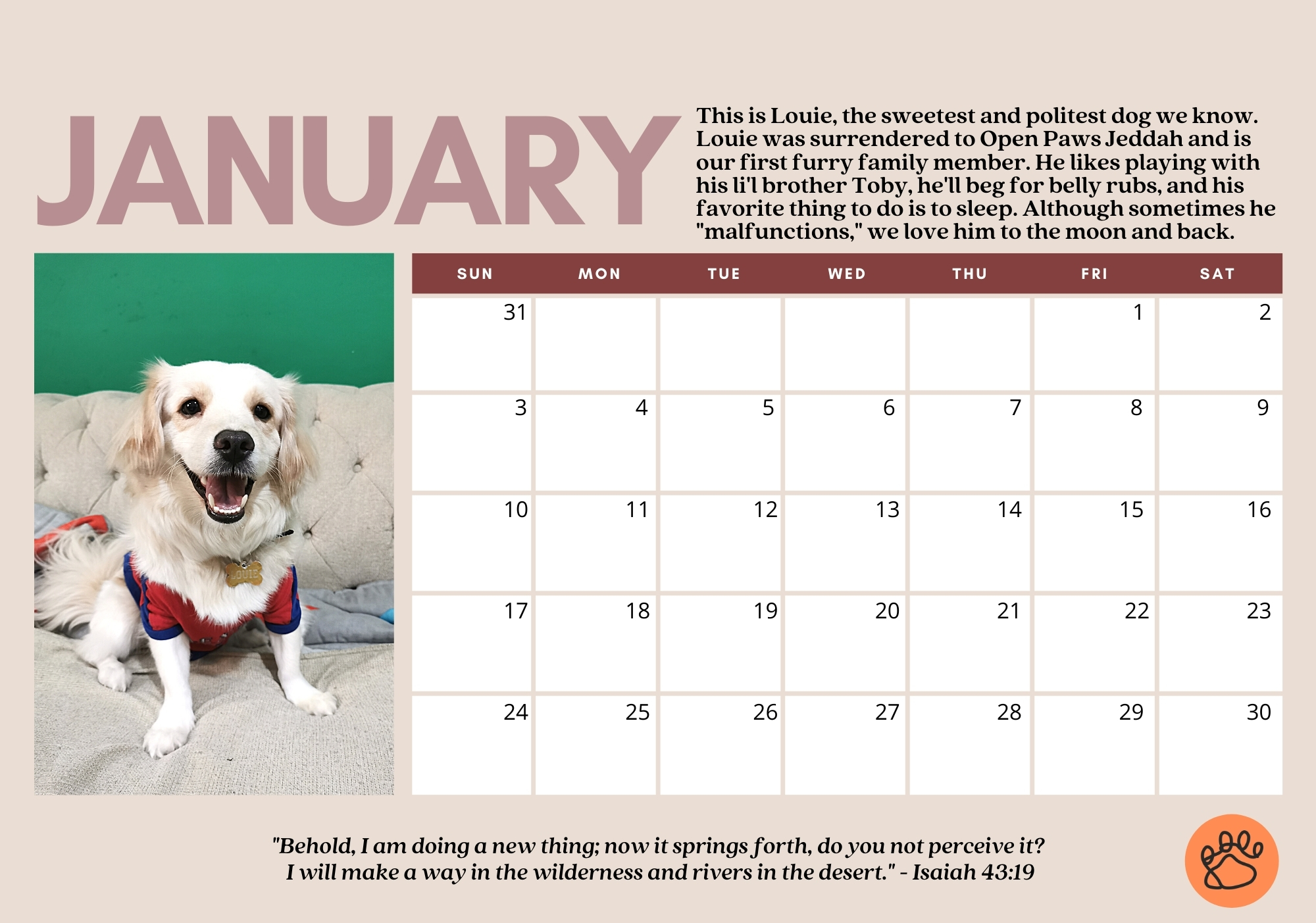 2021 Rescue Pets Calendar made with Canva